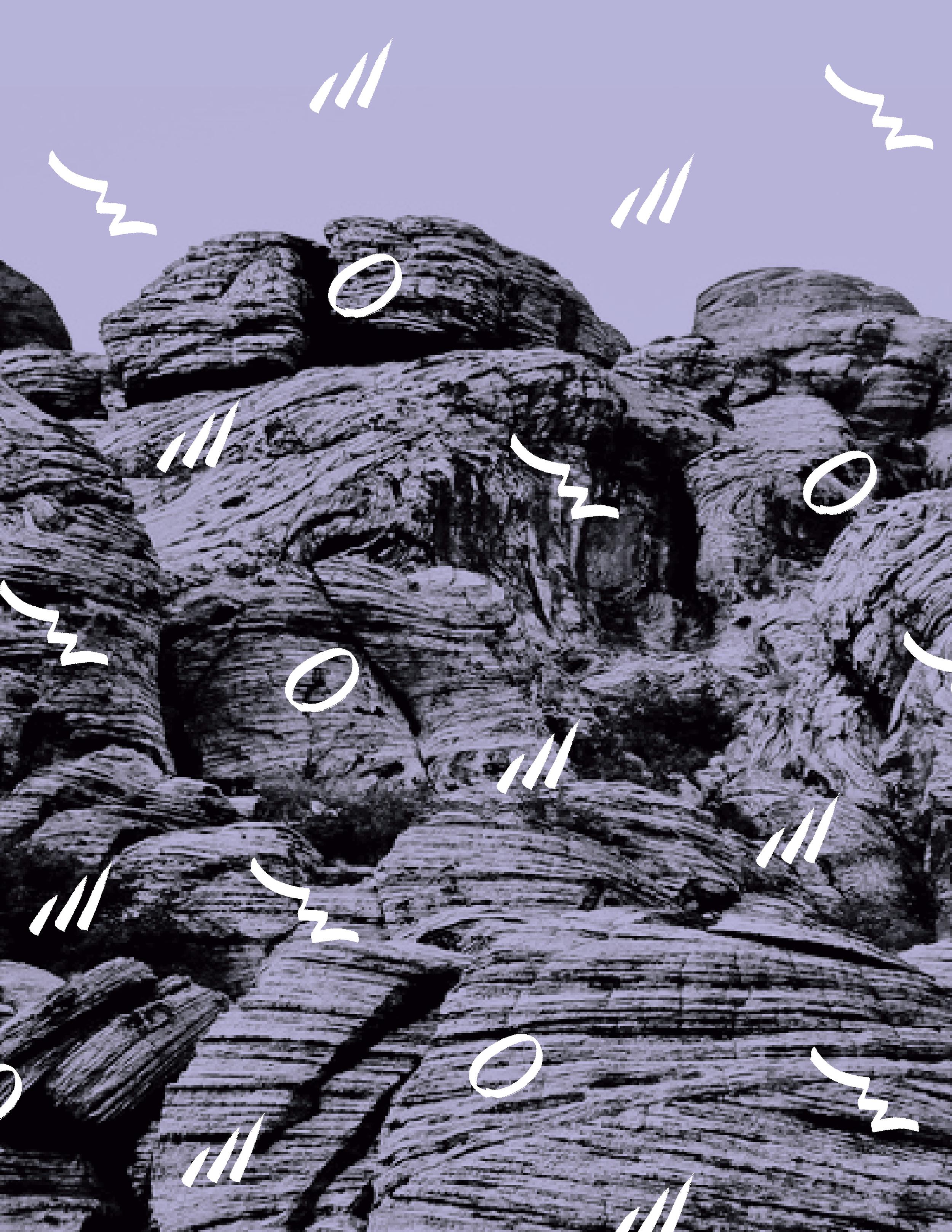 Rose Mountain Pattern Purps-02.jpg