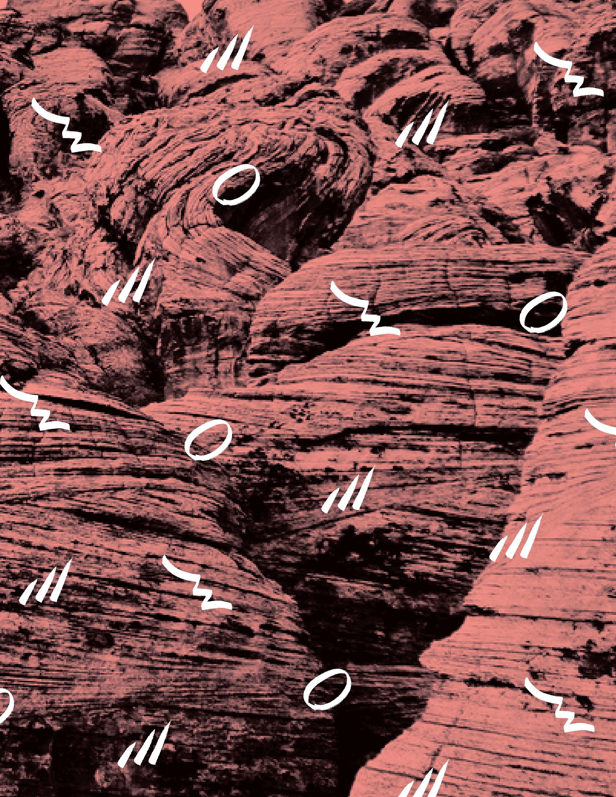 Rose Mountain Pattern Rose-01.jpg