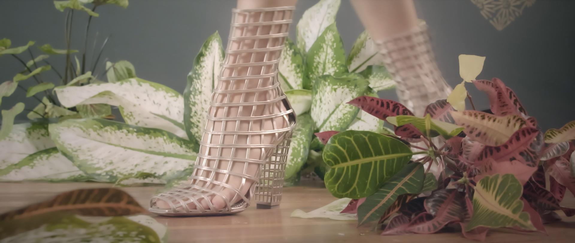 silver shoe step.jpg