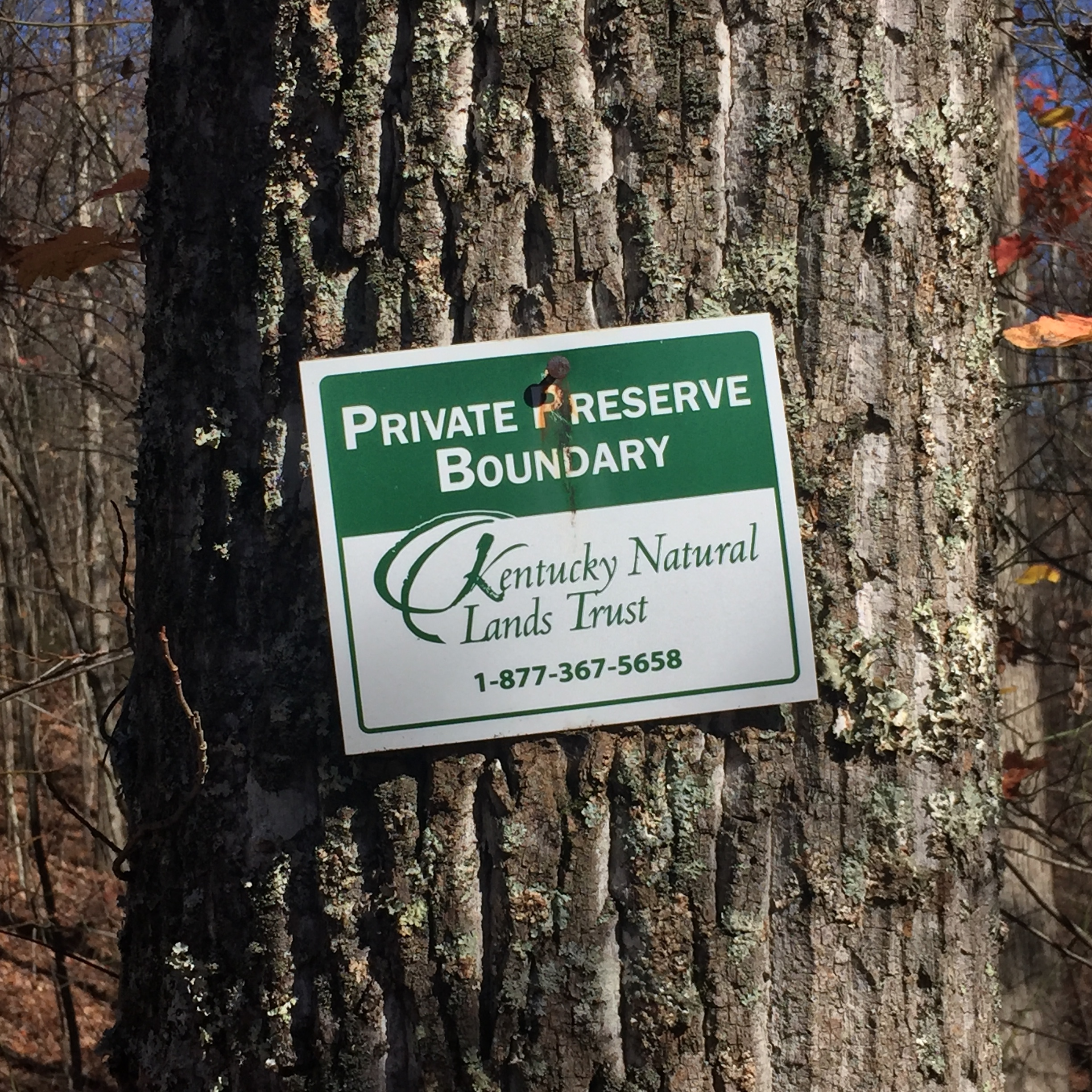Preservation Boundary Marker on Pine Mountain