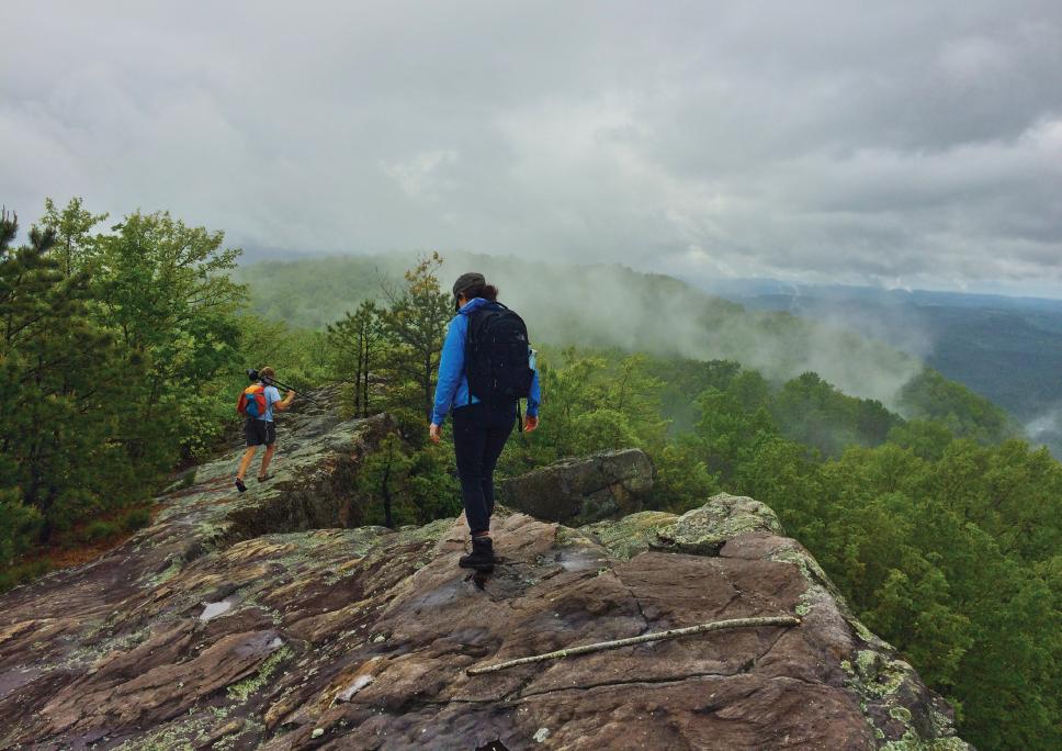 Kentucky Natural Lands Trust    Pine Mountain, Kentucky
