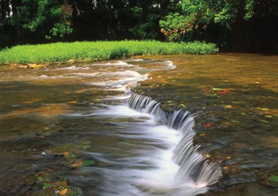 Future Fund Land Trust    Floyds Fork, Kentucky