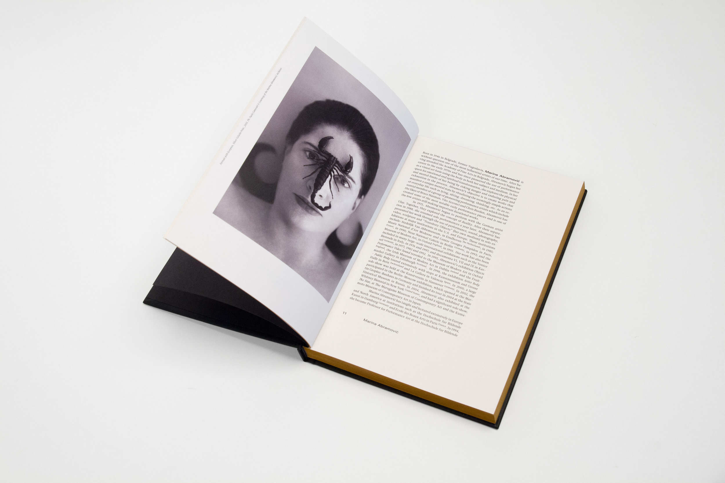 Portrait of an Artist, by Hugo Huerta Marin Published by Anteism 216 pg (Colour, Digital) 6.5 in x 9.5 in - 16.5 cm x 24 cm Hardcover (available in softcover) - Perfect binding Screenprinted cover