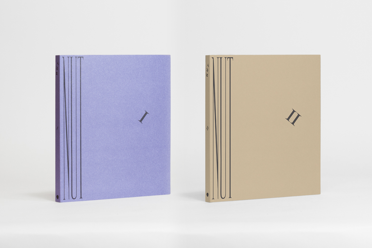 NUT Volume I and II, by Liza Lacroix and Alli Melanson 61 pg and 70 pg (Colour, Digital) 5 in x 7 in - 13 cm x 18 cm Softcover - Perfect bound with perforated pages NUT Volume I - Two colour offset / NUT Volume II - Matte laminate