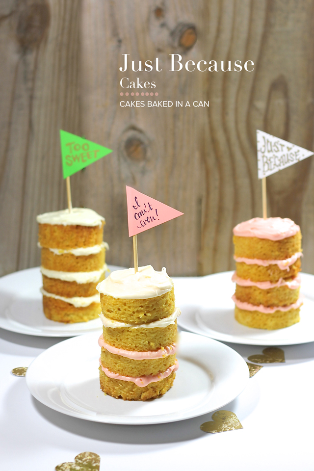 Some days deserve cake - make these Just Because cakes! Using cans you can create a multi-layer mini cake that celebrate any (and every) occasion.