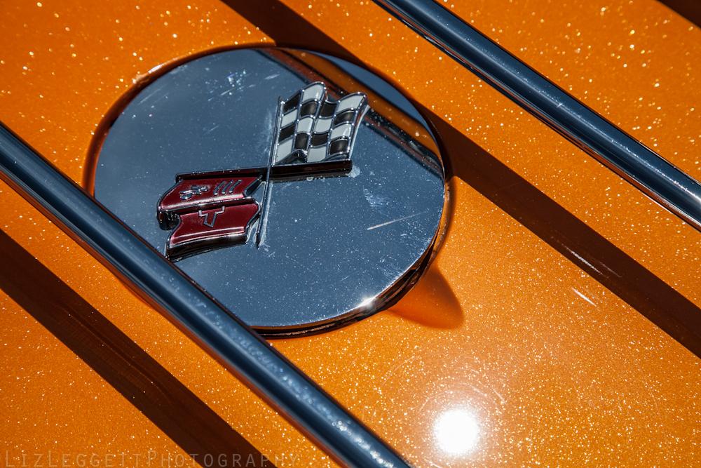 2012_liz_leggett_photography_john_scotti_show_watermarked_watermark-128.jpg