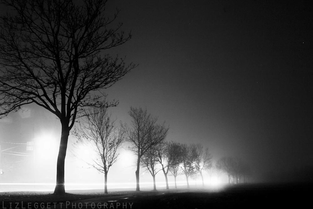 2014_liz_leggett_photography_tumblr_watermarked--78.jpg
