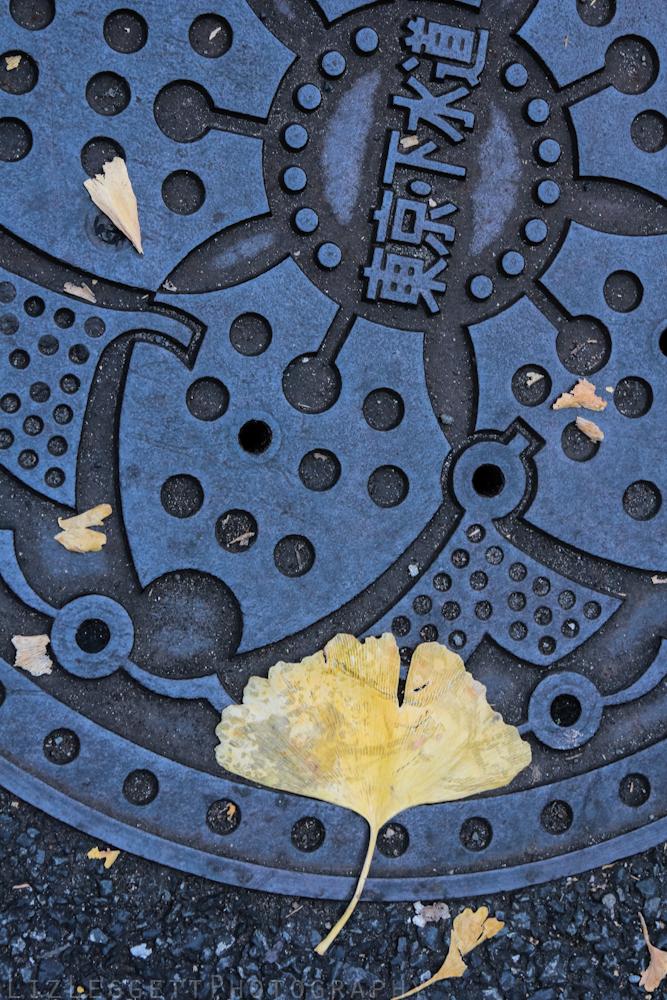 2015_Liz_Leggett_Photography_Japan_WATERMARKED-6998.jpg