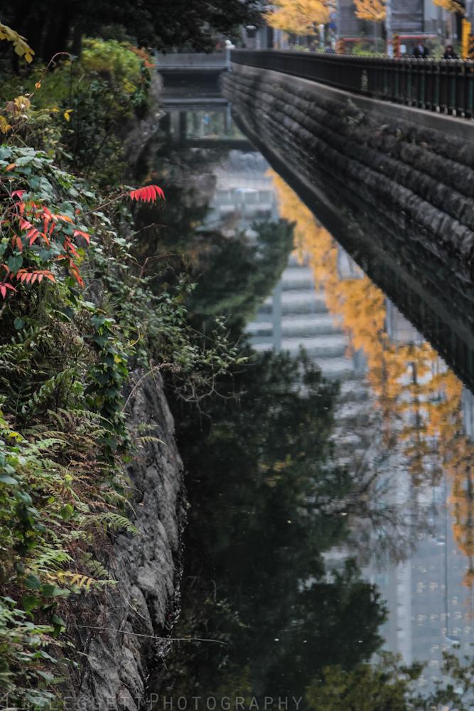 2015_Liz_Leggett_Photography_Japan_WATERMARKED-7028.jpg