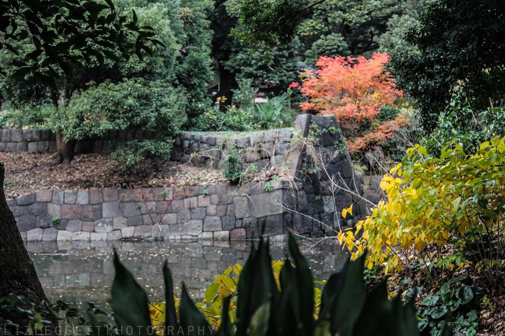 2015_Liz_Leggett_Photography_Japan_WATERMARKED-7057.jpg