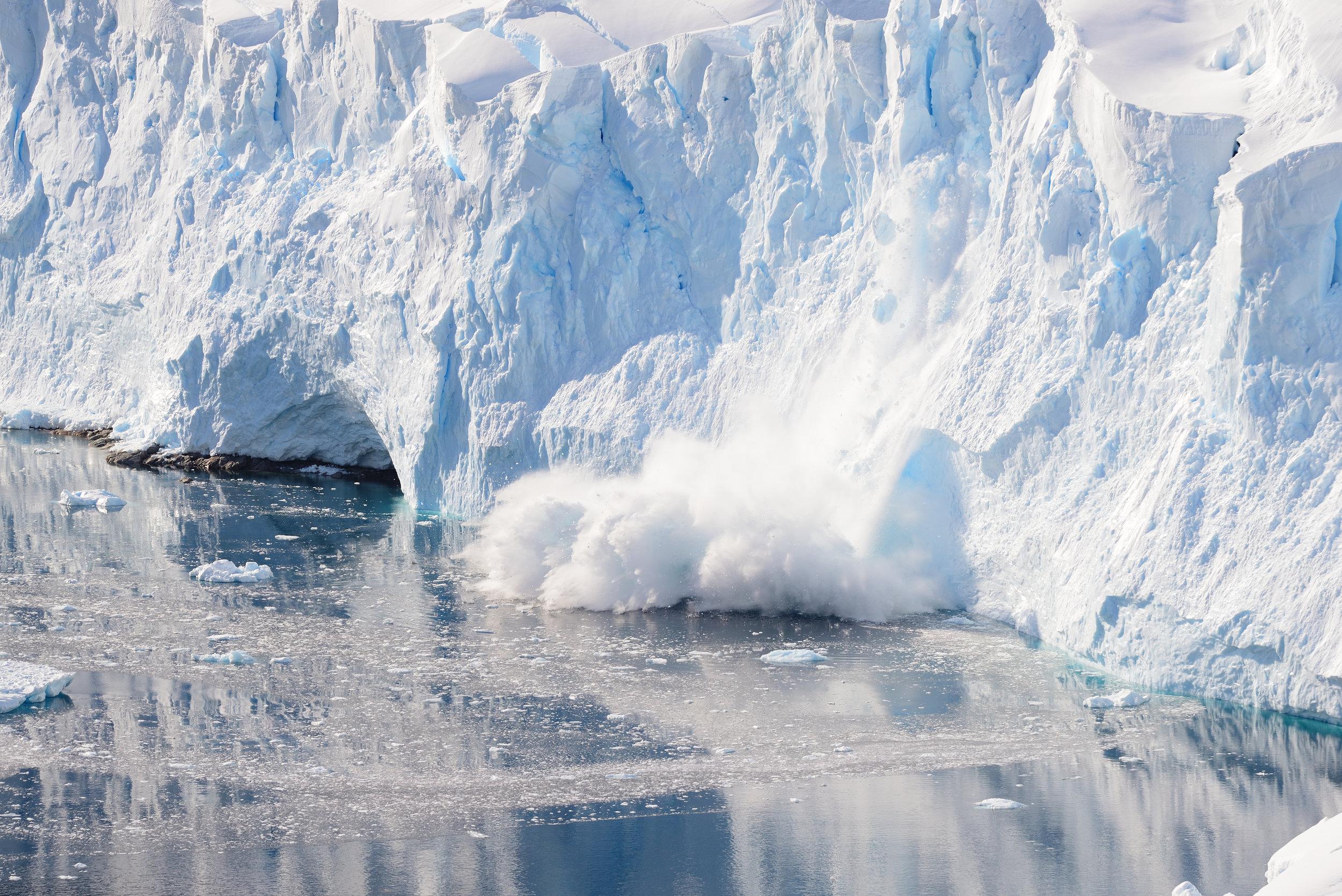 A calving glacier in Neko Harbor, Antarctic Peninsula (Image: L. Yeung).