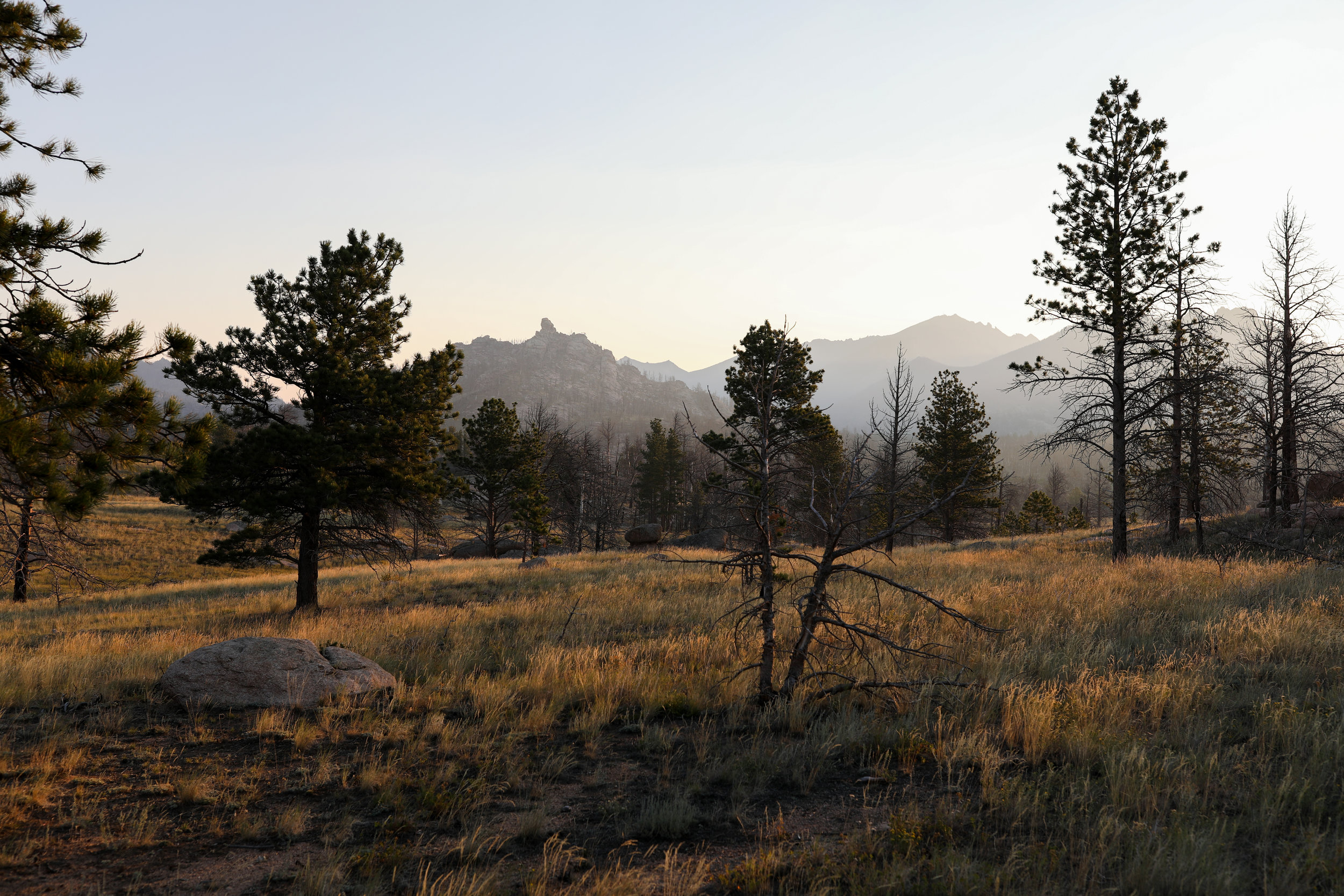 Medicine Bow National Forest, Wyoming