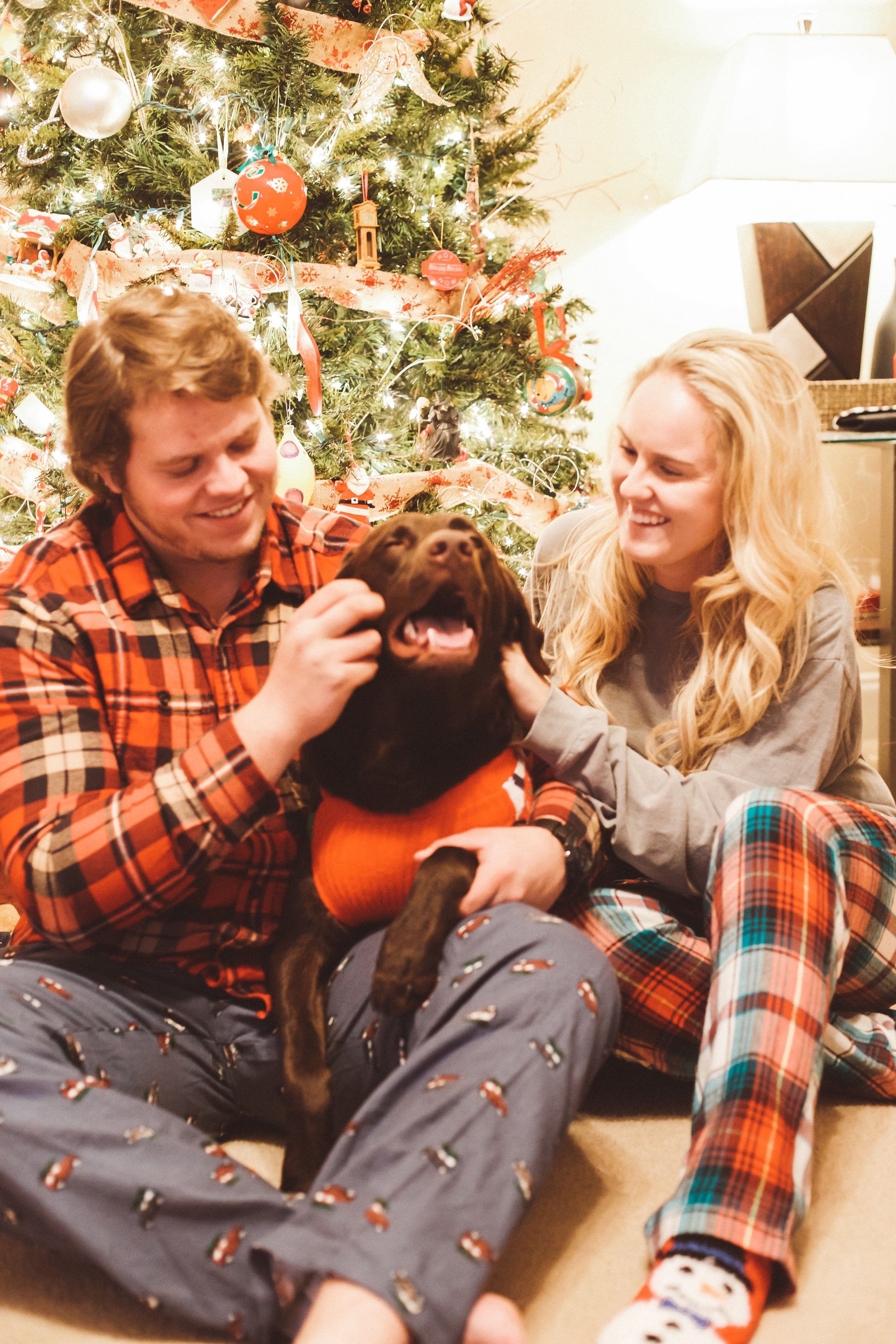 Christmas photos.