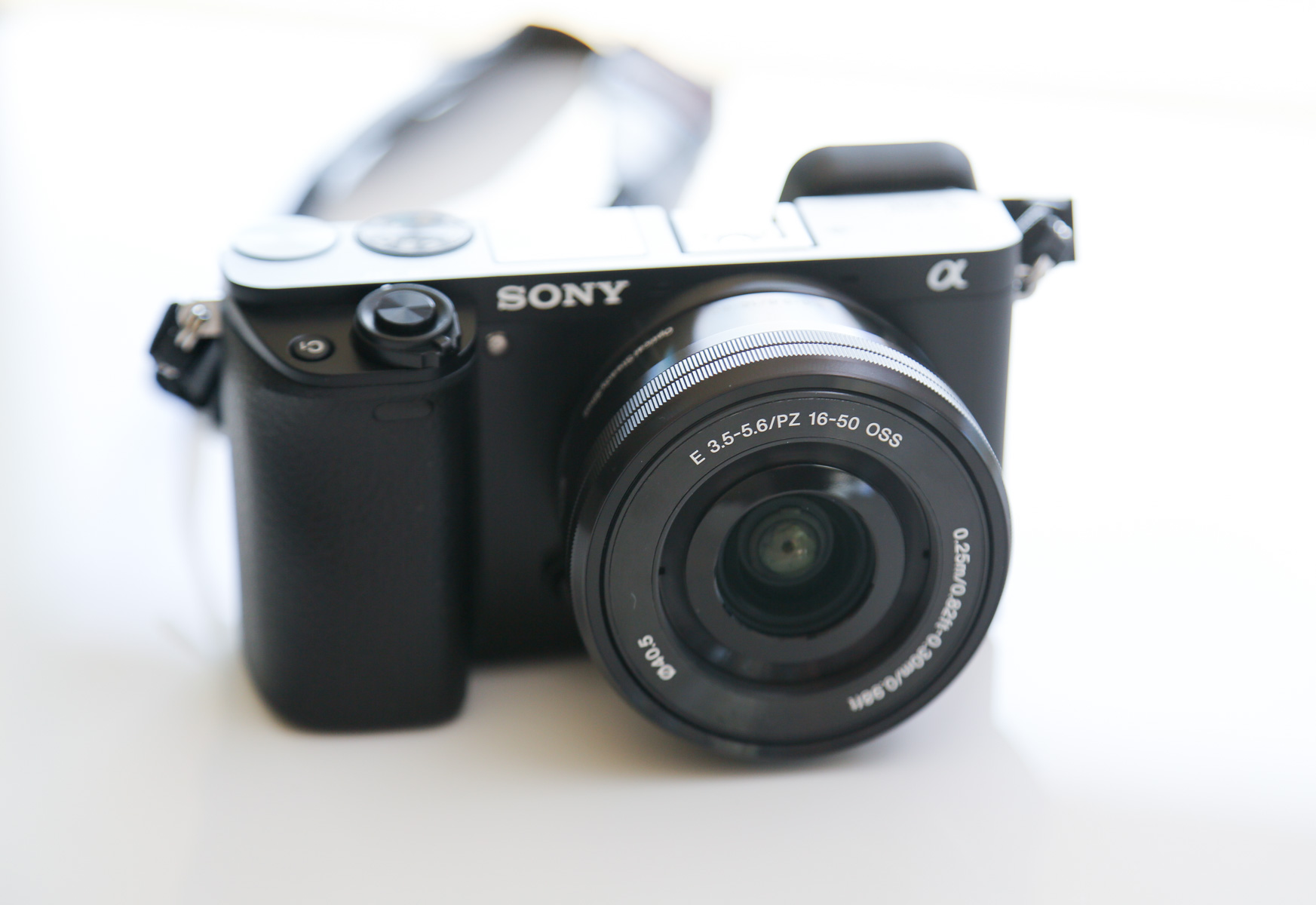 Sony Alpha a6000 with kit 16-50mm f/3.5 to f/5.6 lens - Click to enlarge