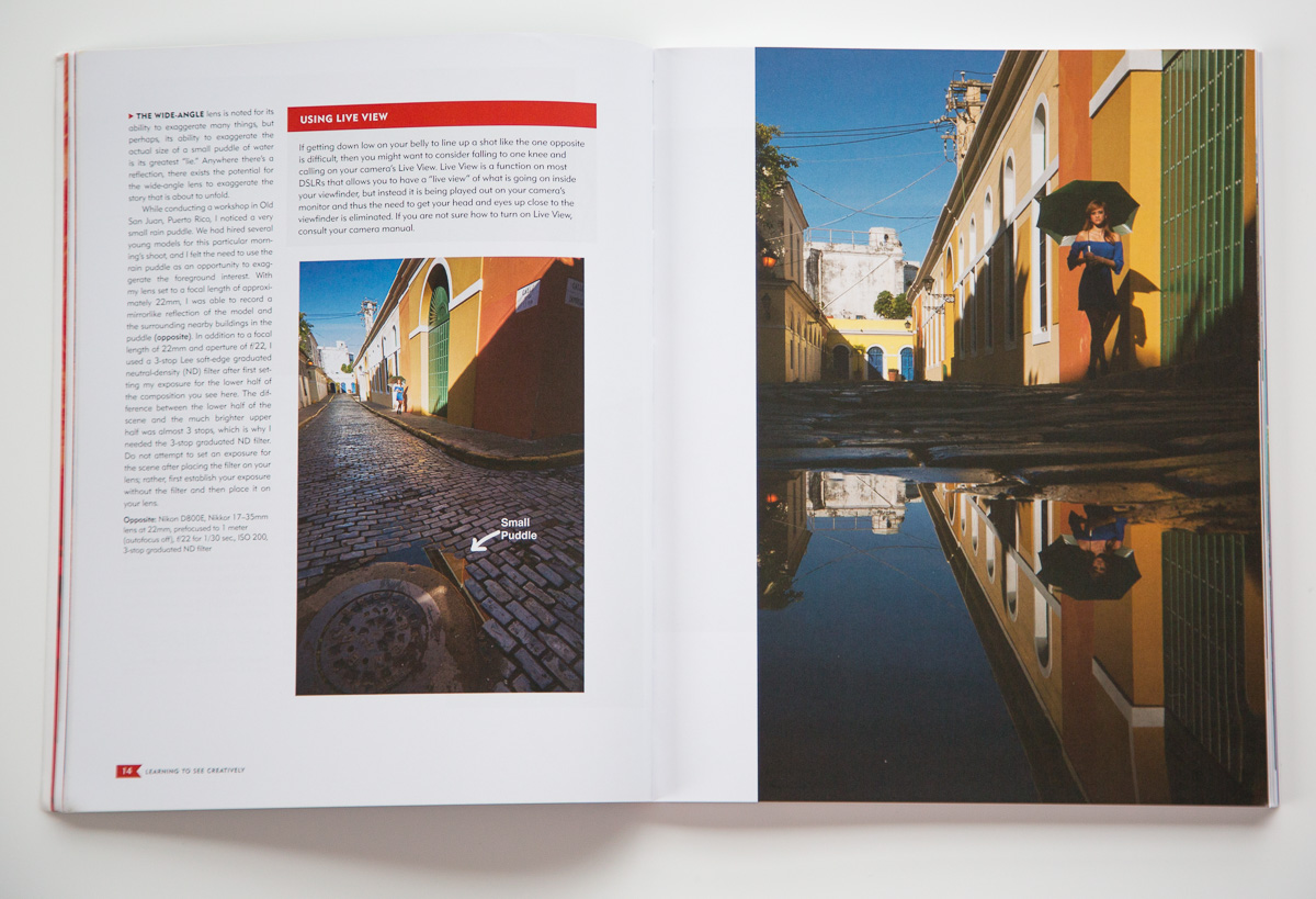 """The same subject shot two different ways. On the left is what I call """"tourist perspective,"""" shot from the typical viewpoint of a standing human being. On the right, Peterson gets down to ground level and uses a reflection in a small puddle for a more creative photo.  [click to enlarge]"""