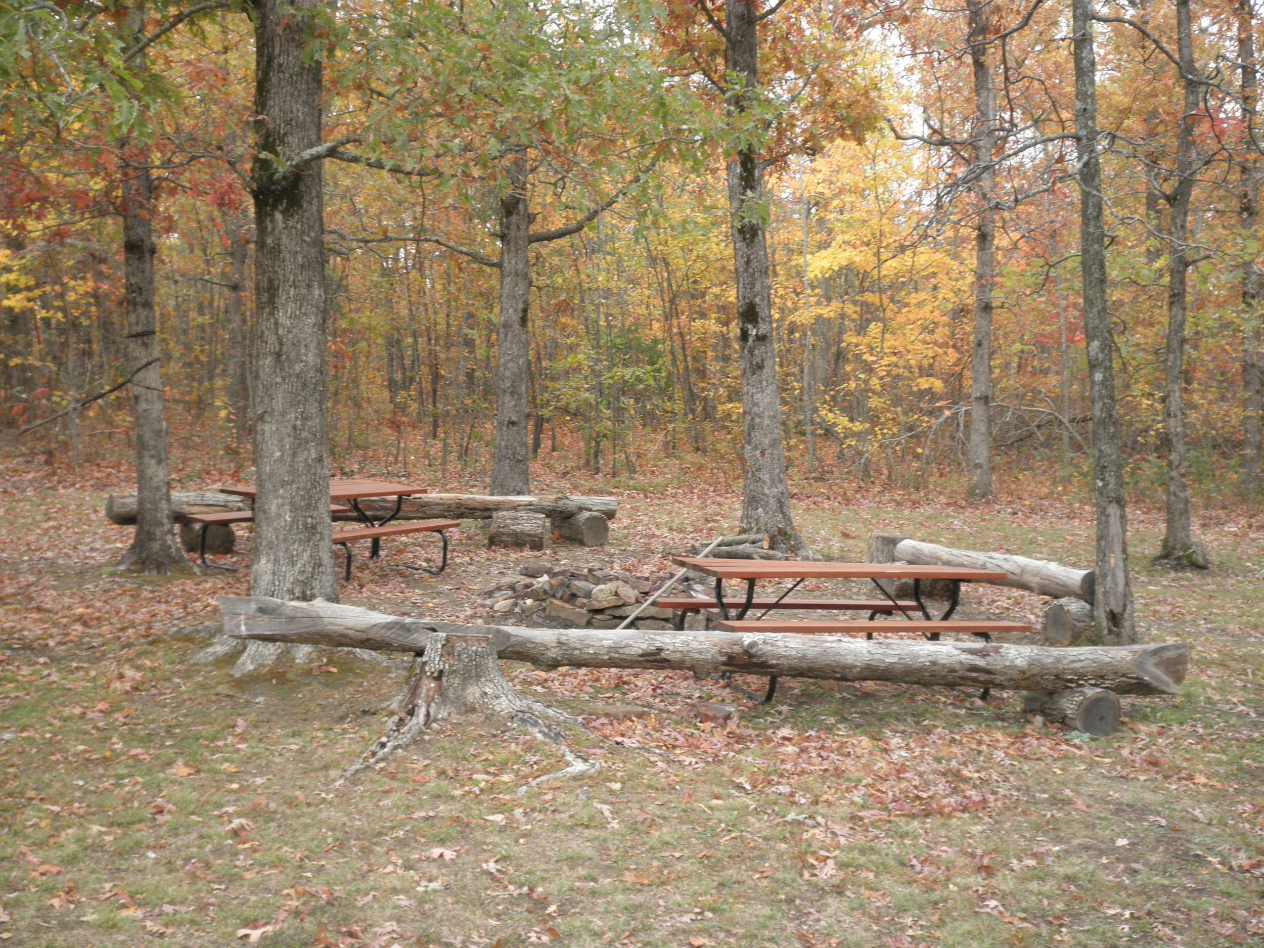 Space for everyone in the Ozarks Outdoors