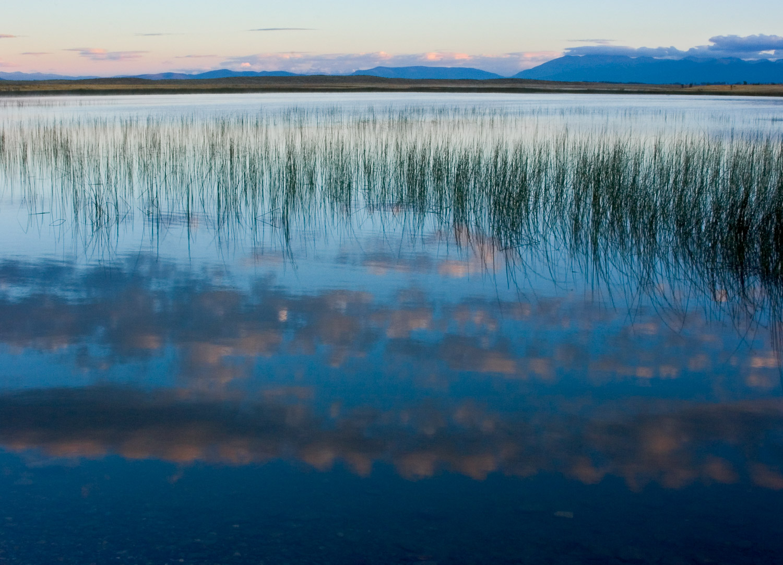 Sunrise at Brown's Lake