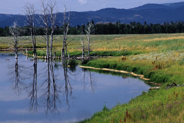 Blackfoot Valley Pond