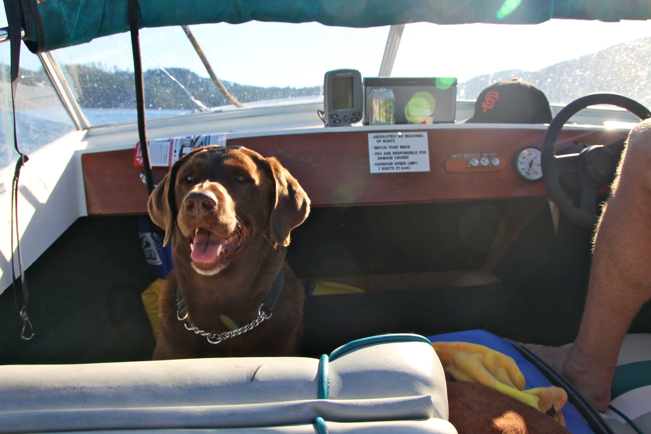 We decided to rent a boat from our hotel one afternoon and cruise around Pender Harbour. This was Rypien's second time in a boat and he was pretty unsure at first but started to warm up to the idea near the end.