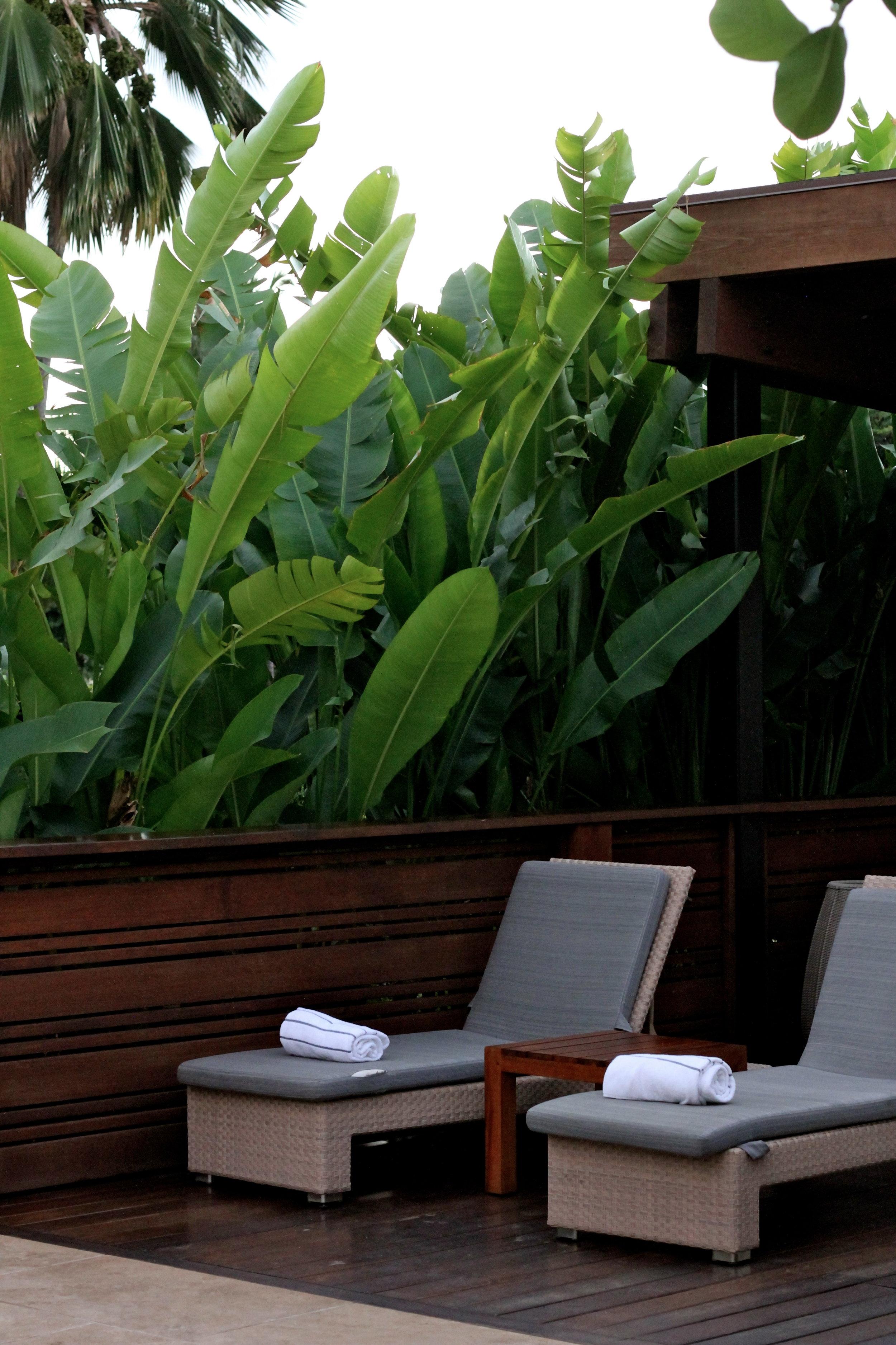 Hotel Wailea, Maui, Hawaii