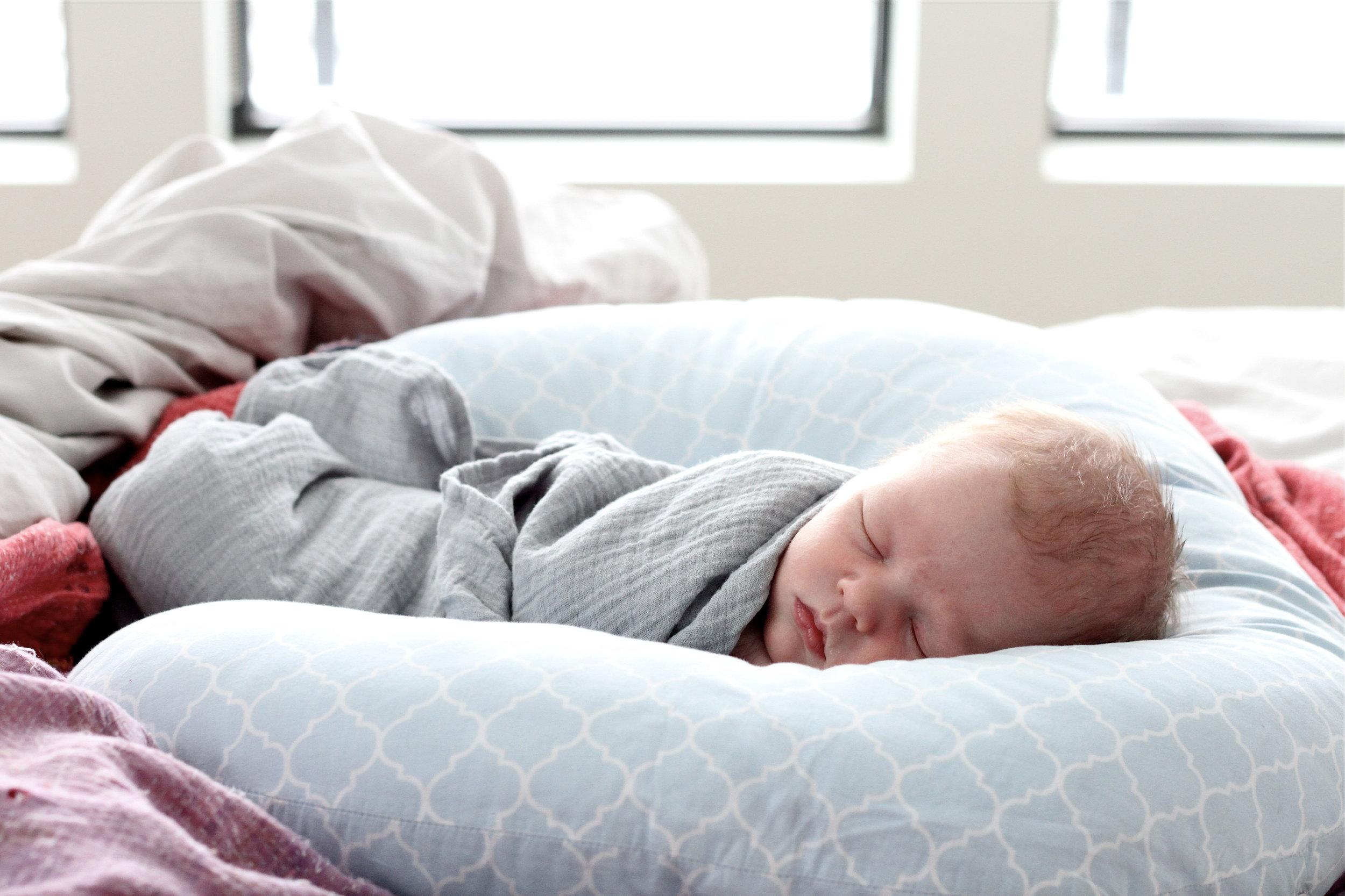 One week old.