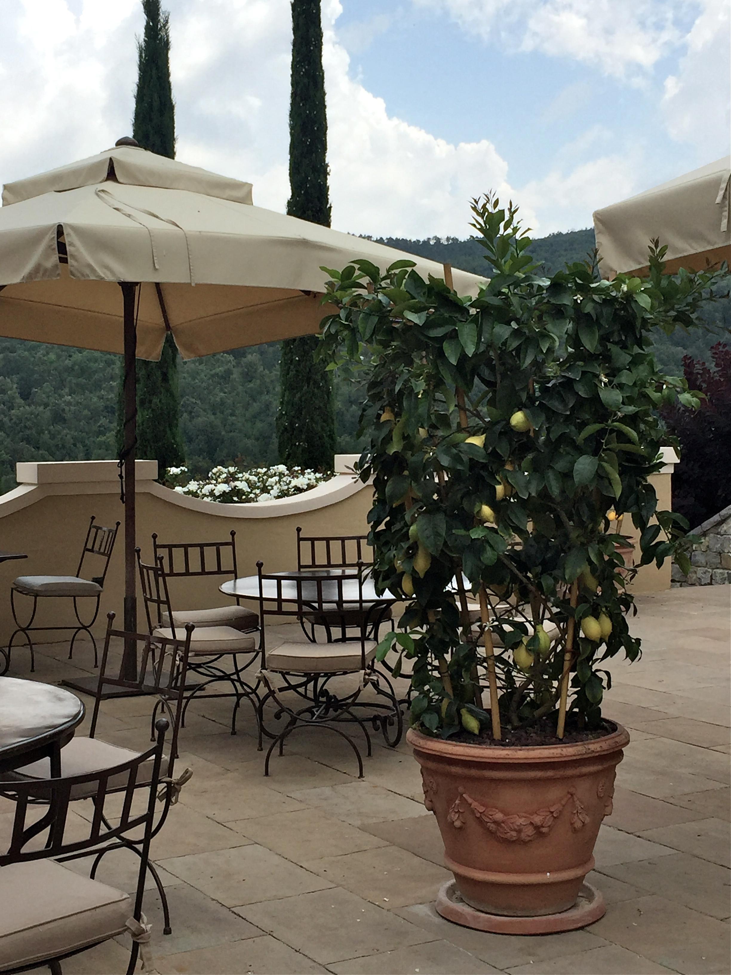 Castiglion del Bosco, Montalcino, Tuscany, Italy.