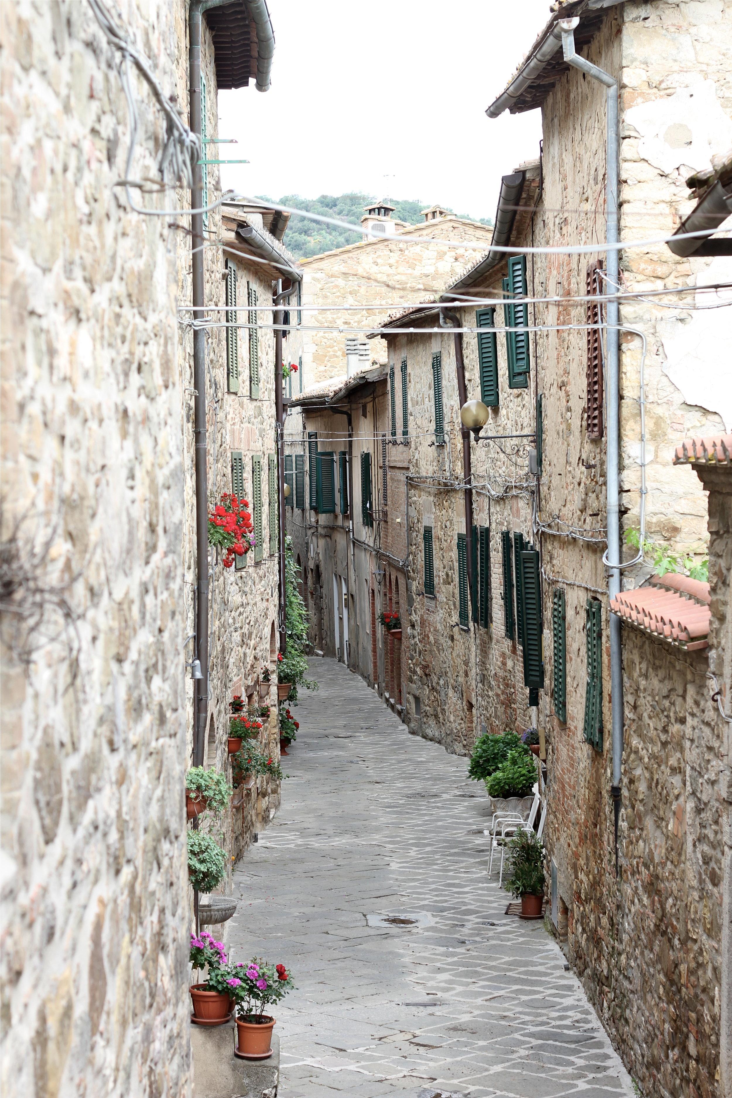 Castelnuovo dell' Abate, Montalcino, Tuscany, Italy.