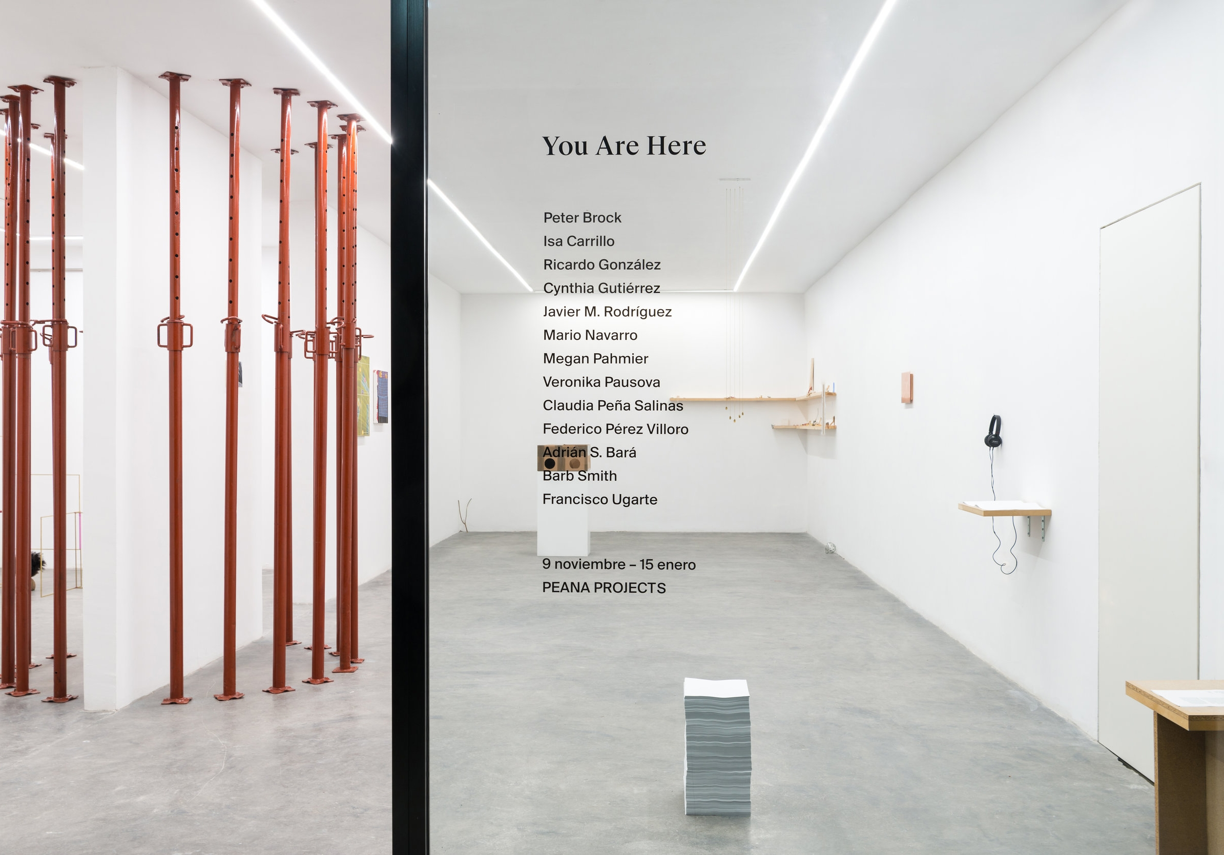 Installation view from  You Are Here , 2017.