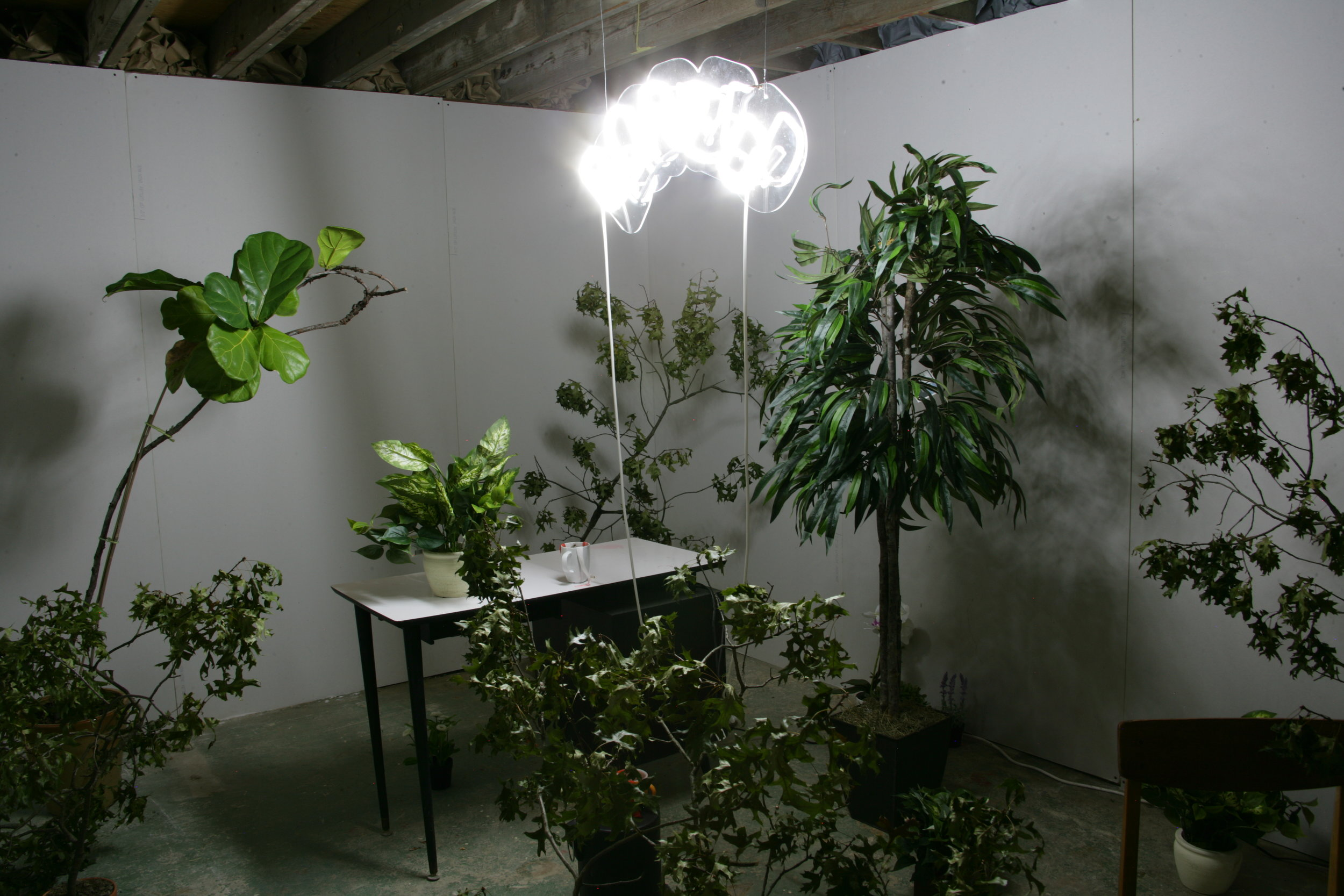 Casey Tang,   Bored to Death,  2011. El-Wire, office plants, office chairs, butterflies, variable dimensions.