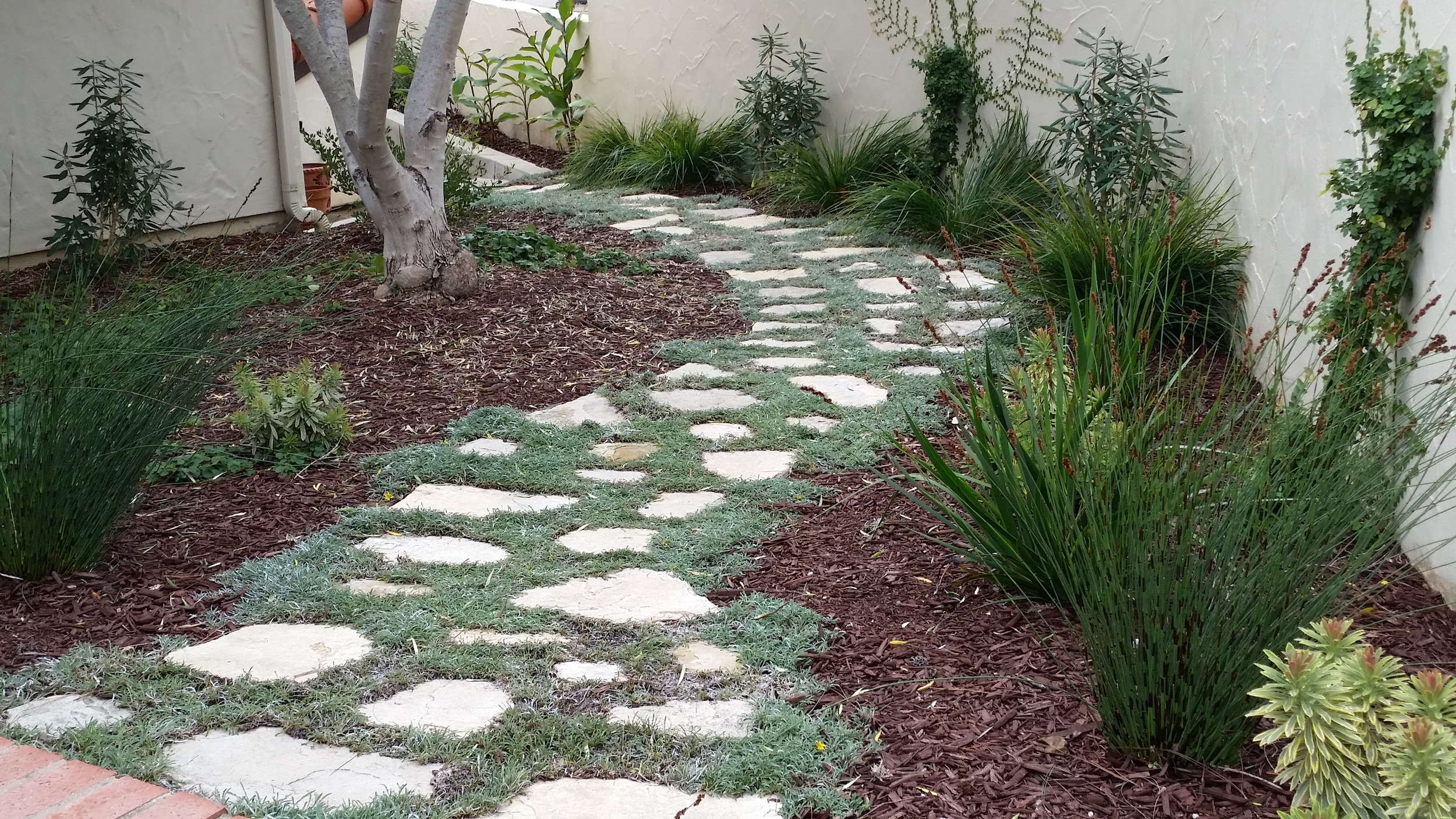 Flagstone Path with Planted Grout