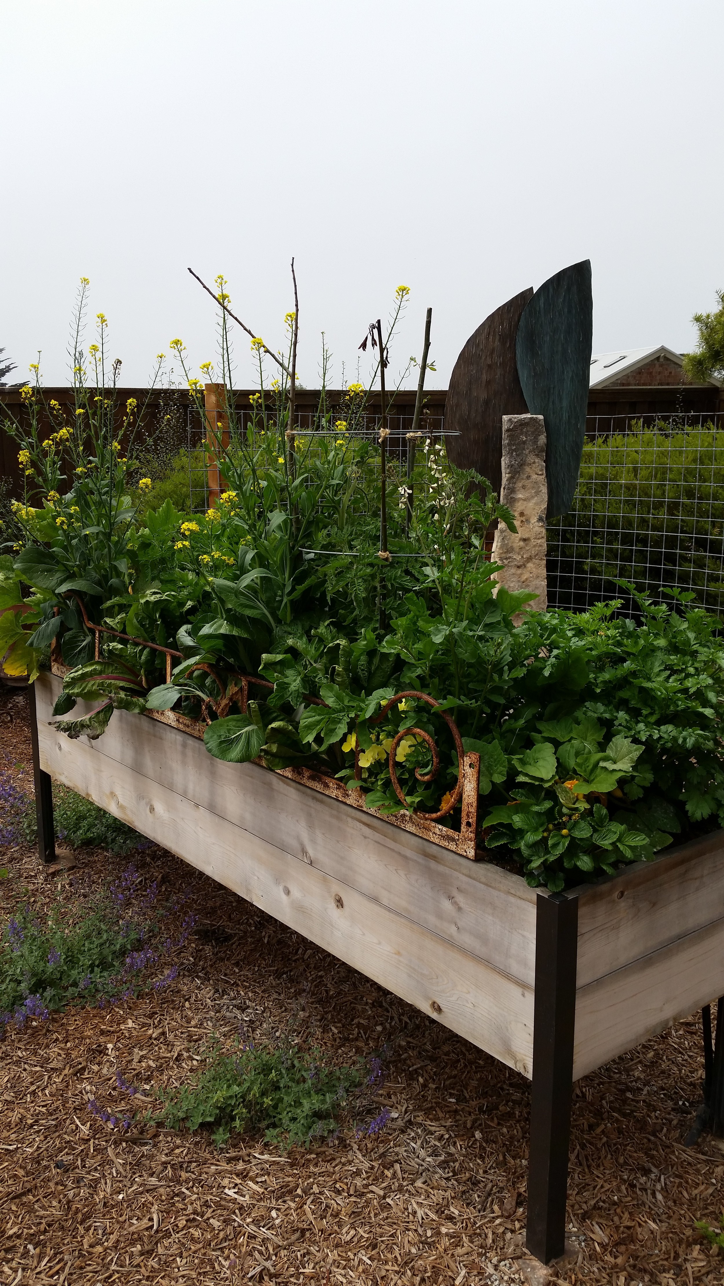 Eckert Raised Bed 1.jpg