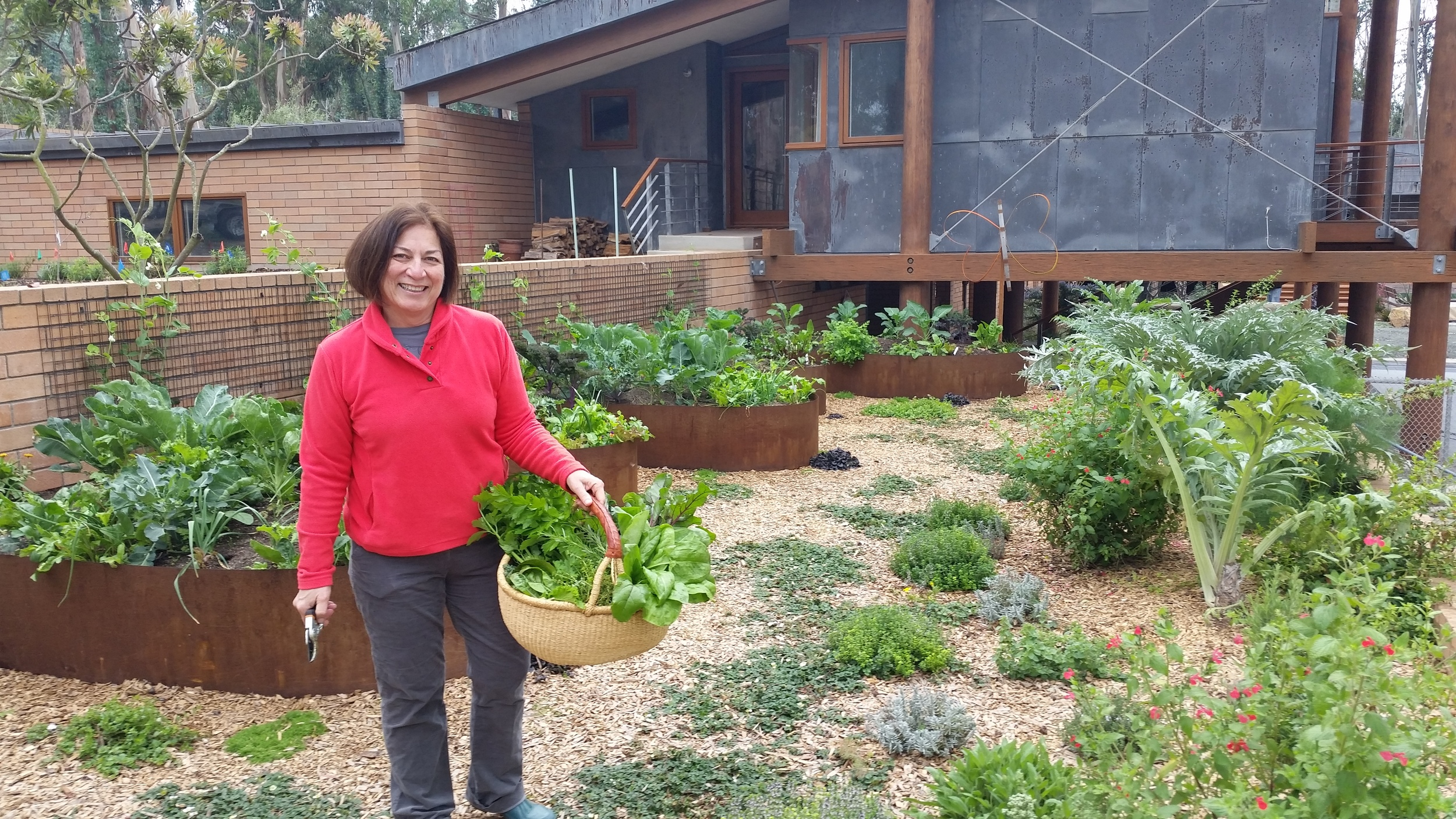 Food Forests and Abundant Veggie Beds