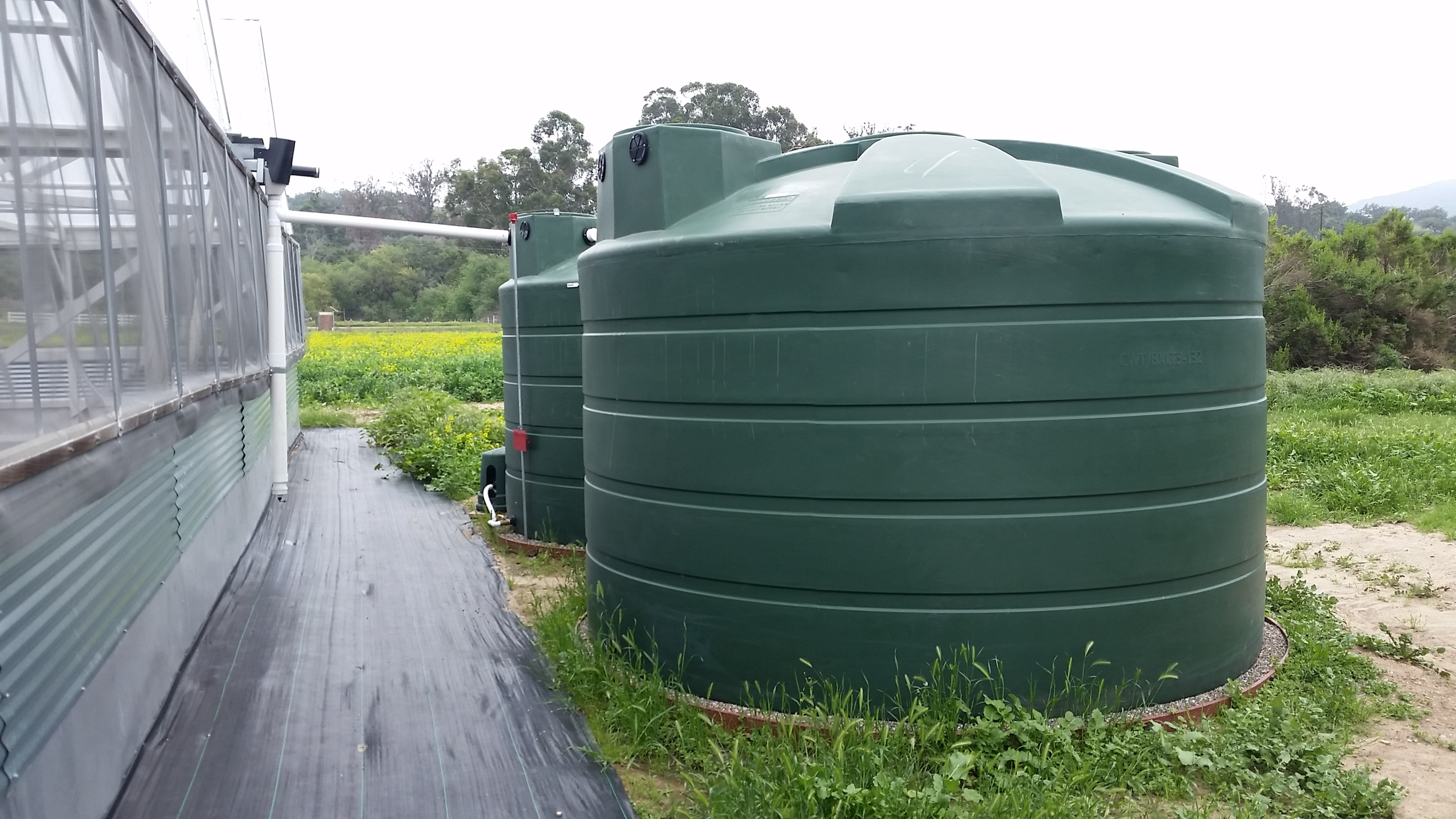 Two 5,000 Gallon Tanks for a Greenhouse with Bioswale Overflow