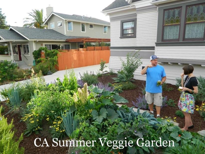 CA Summer Veggie Garden