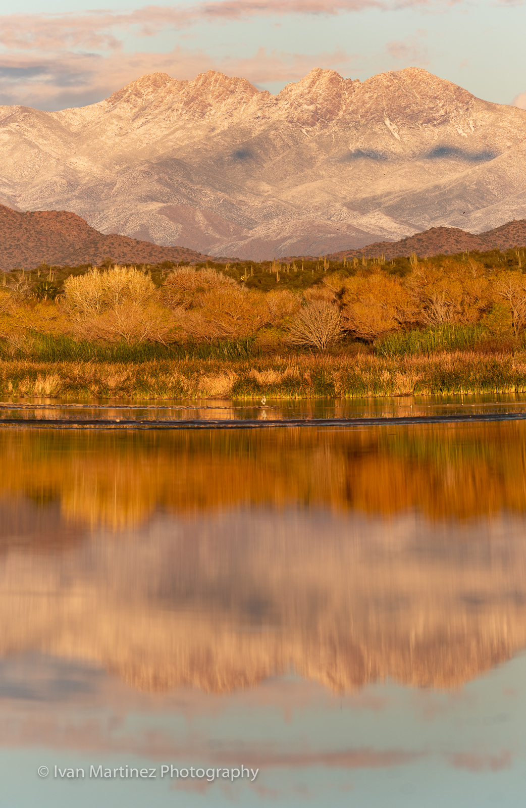 A vertical composition of snow covered Four Peaks and the Salt River