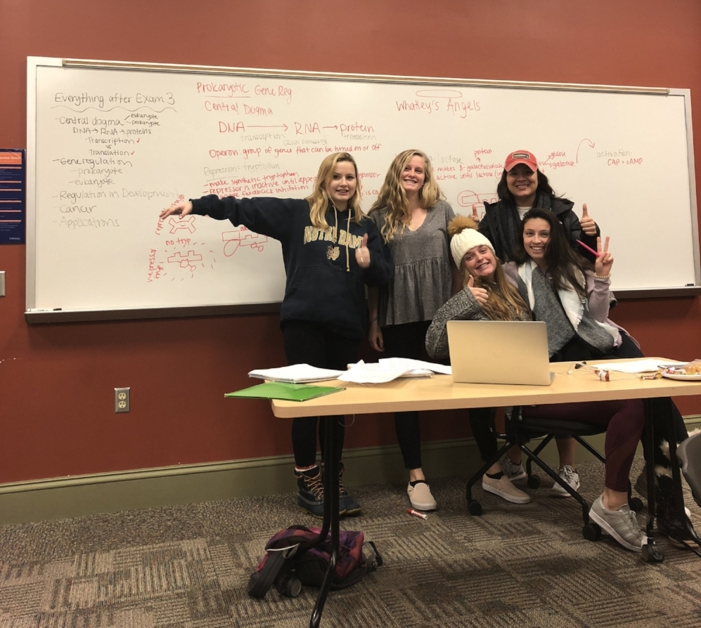 "The self-designated ""Whatley's Angels"" take a break from exam prep. (Alex Esposito, Julia Malarkey, Ally Archer, Monty Rodriguez, and Lily Albainy)"
