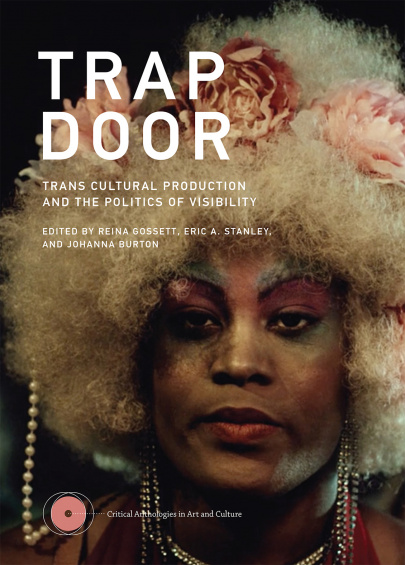 A still from  Happy Birthday, Marsha!  by Reina Gossett and Sasha Wortzel on the cover of  Trap Door