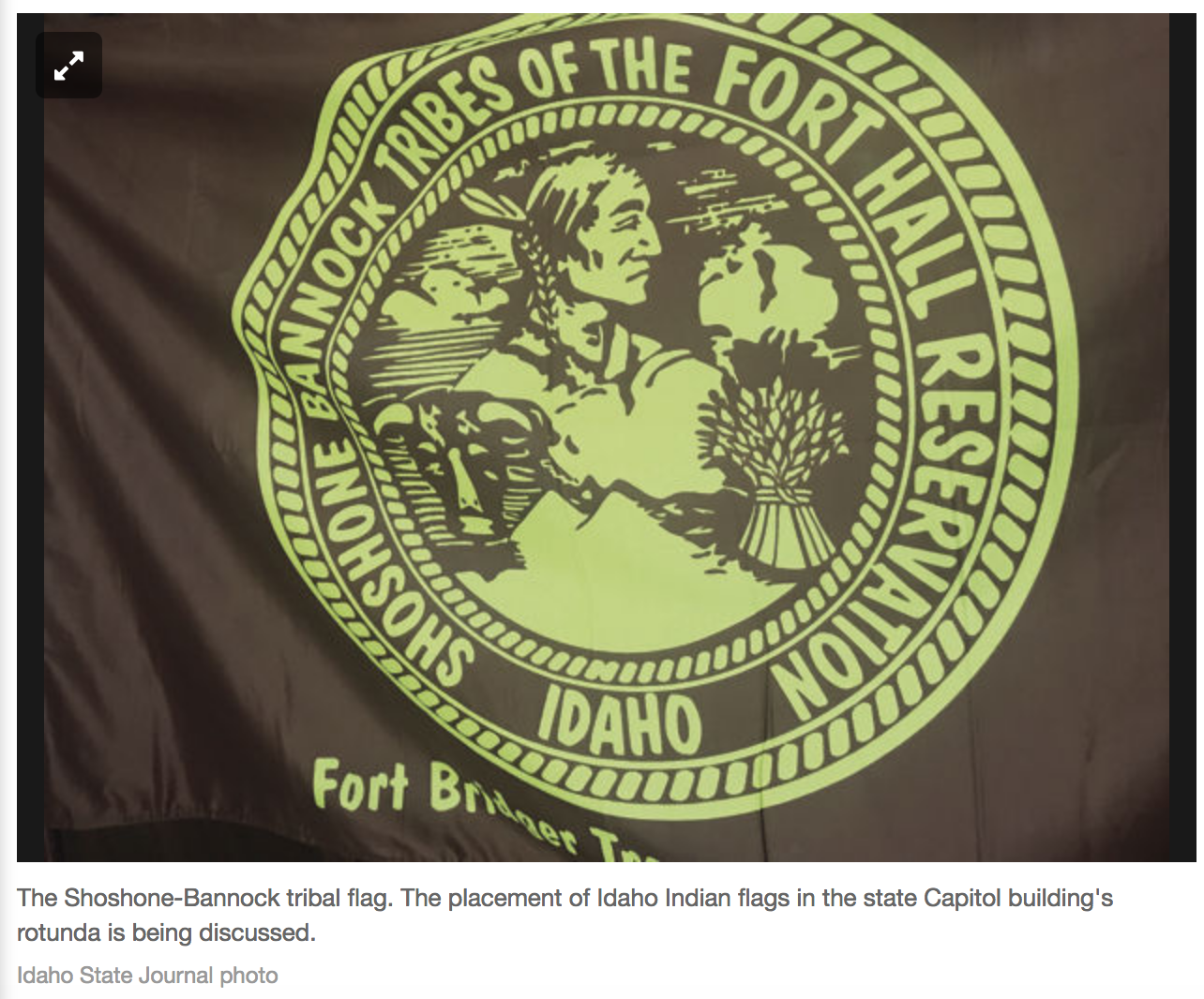 Idaho Tribal Flag.png