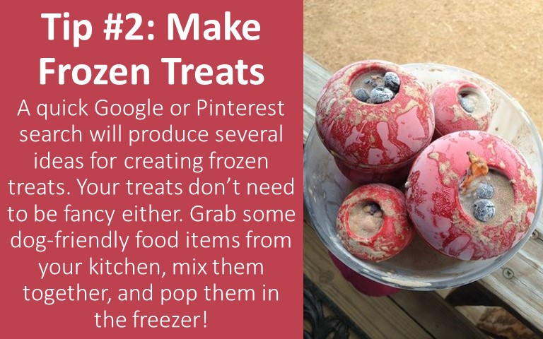 This website has several great frozen treat recipes to try!