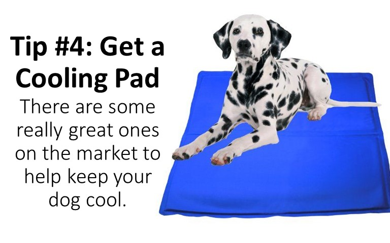 Tip #4 get a cooling pad and most cooling pads are pressure or weight activated cooling gel keeps your pet comfortable for hours, no need to freeze or chill!