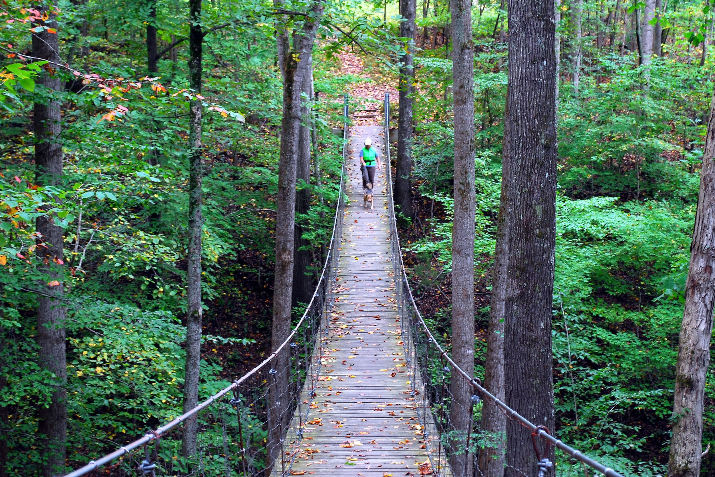 One of the suspension bridges on the Lost Creek Overlook Trail. (Photo: Bob Butters)