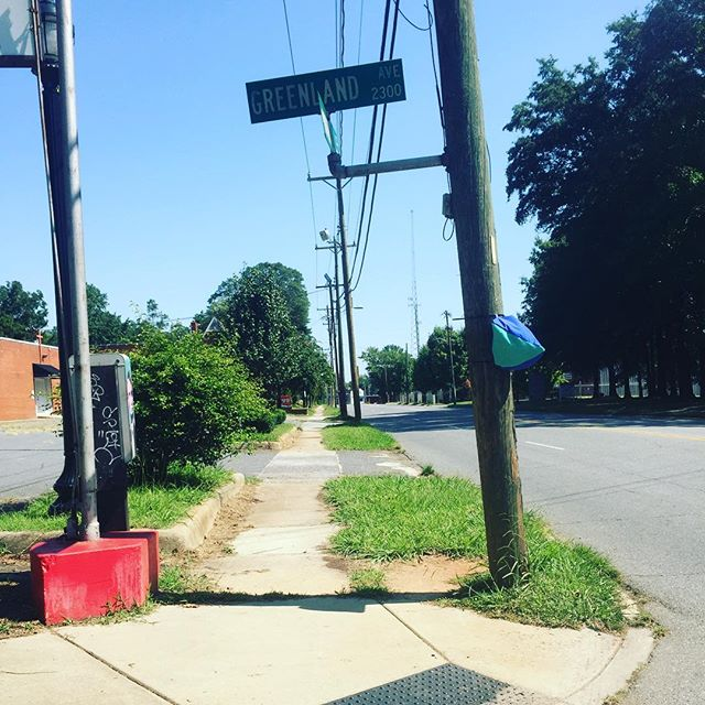 That way. #softsigns #tacticalurbanism #trialrun #sorryduke