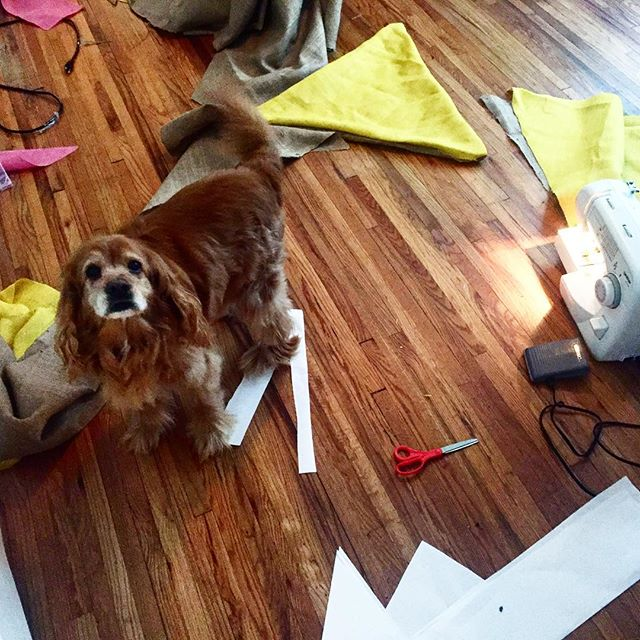 Sewing day with some help from #Carl  #familiarworkshop #softsigns #yardartday2016