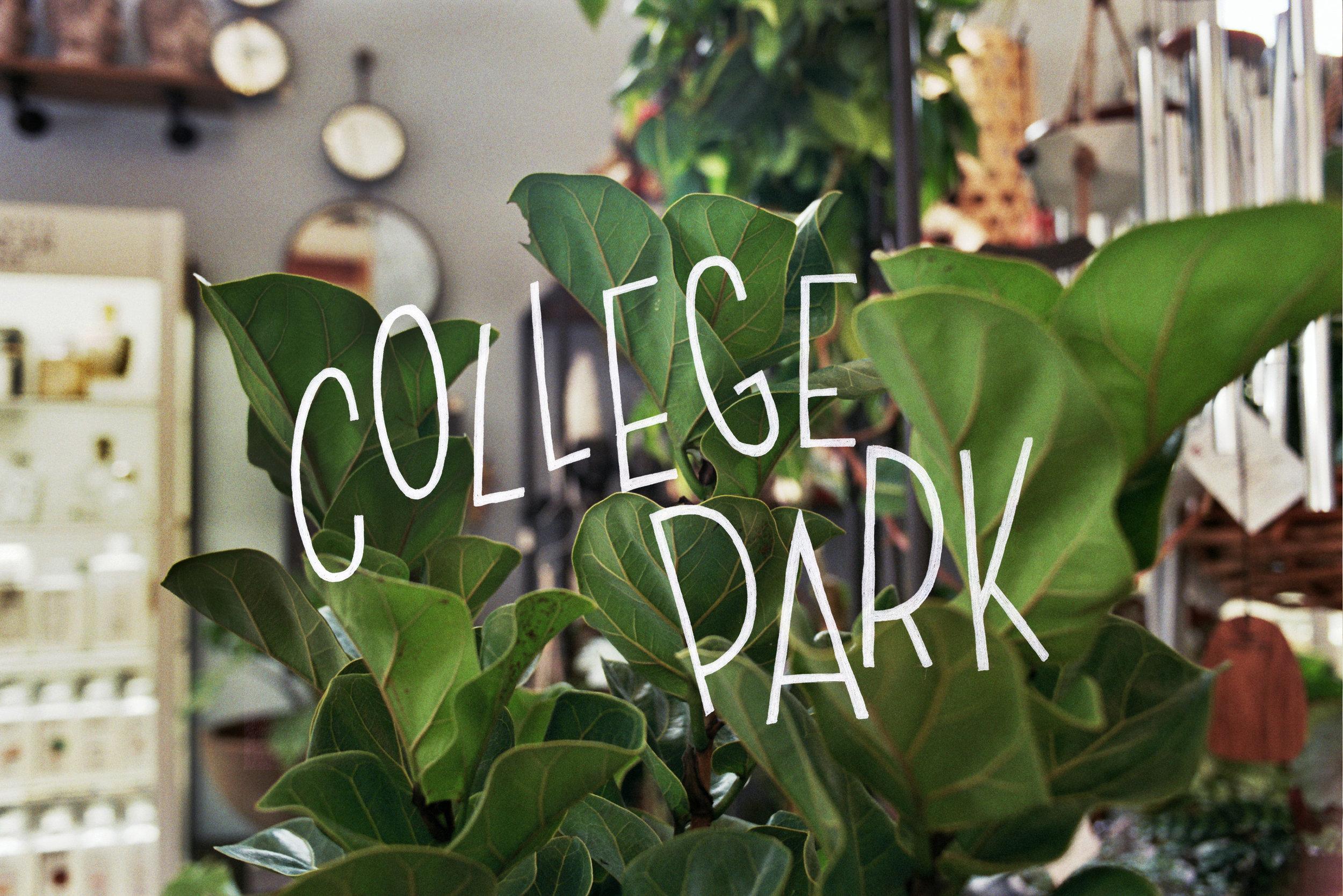 collegetitle1.JPG