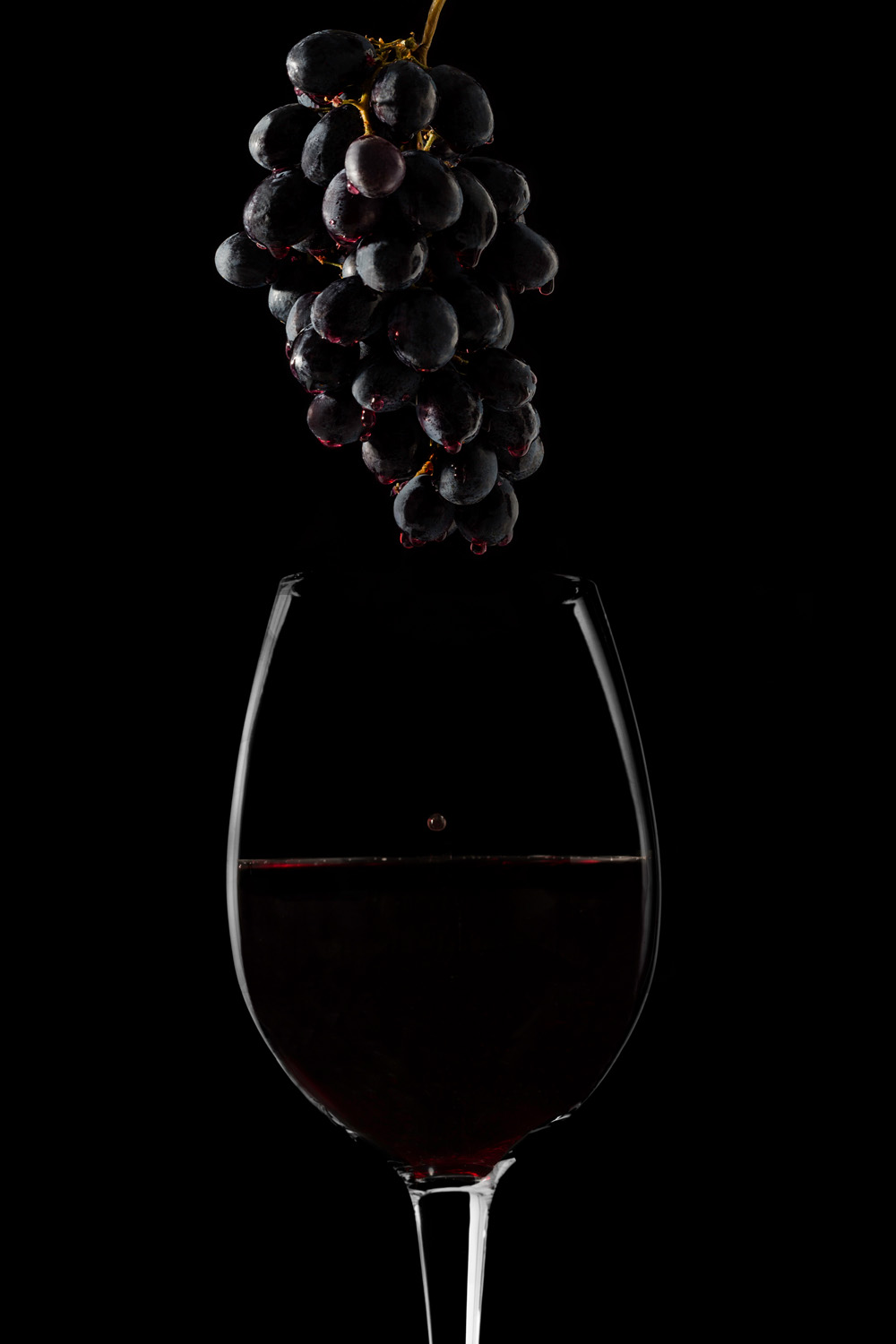 wine product photography
