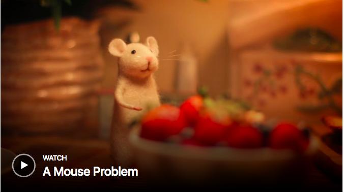 Mouse Problem Image.png