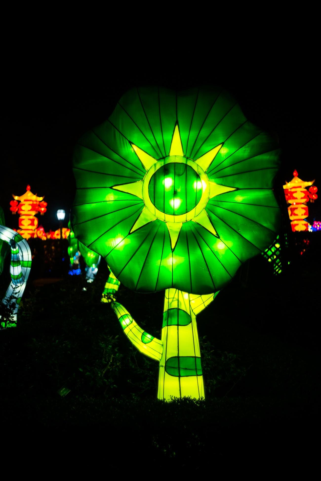 china_lights-108.jpg