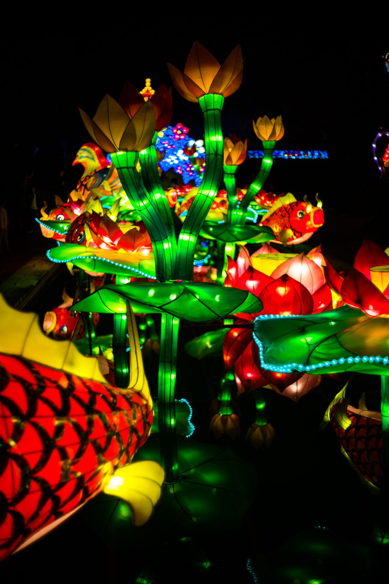 china_lights-109.jpg
