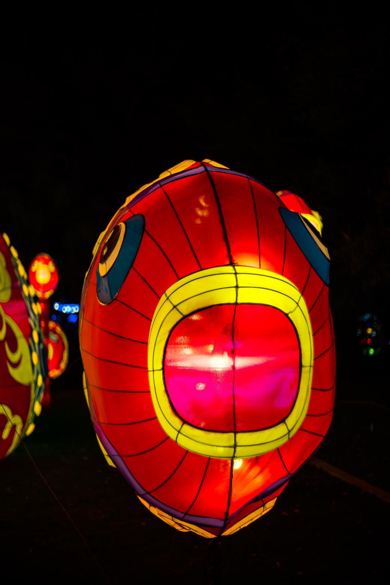 china_lights-155.jpg
