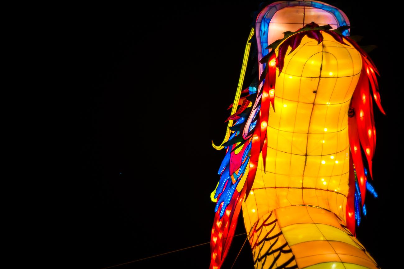 china_lights-160.jpg